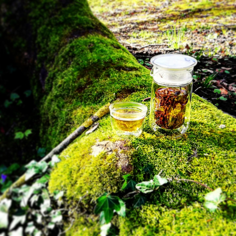 Avez-vous déjà savouré un thé en pleine nature ?
